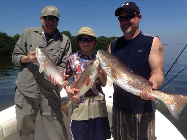 Tampa fishing charter and guide service with captain david for Fishing charters tampa