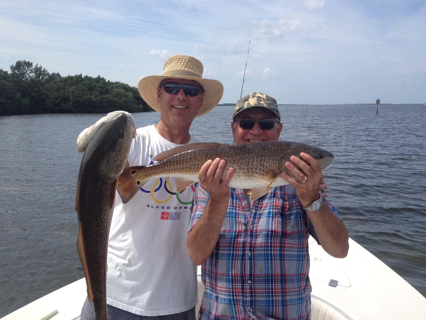 What to do in tampa bay fishing and guide service shallow for Tampa bay fishing guides
