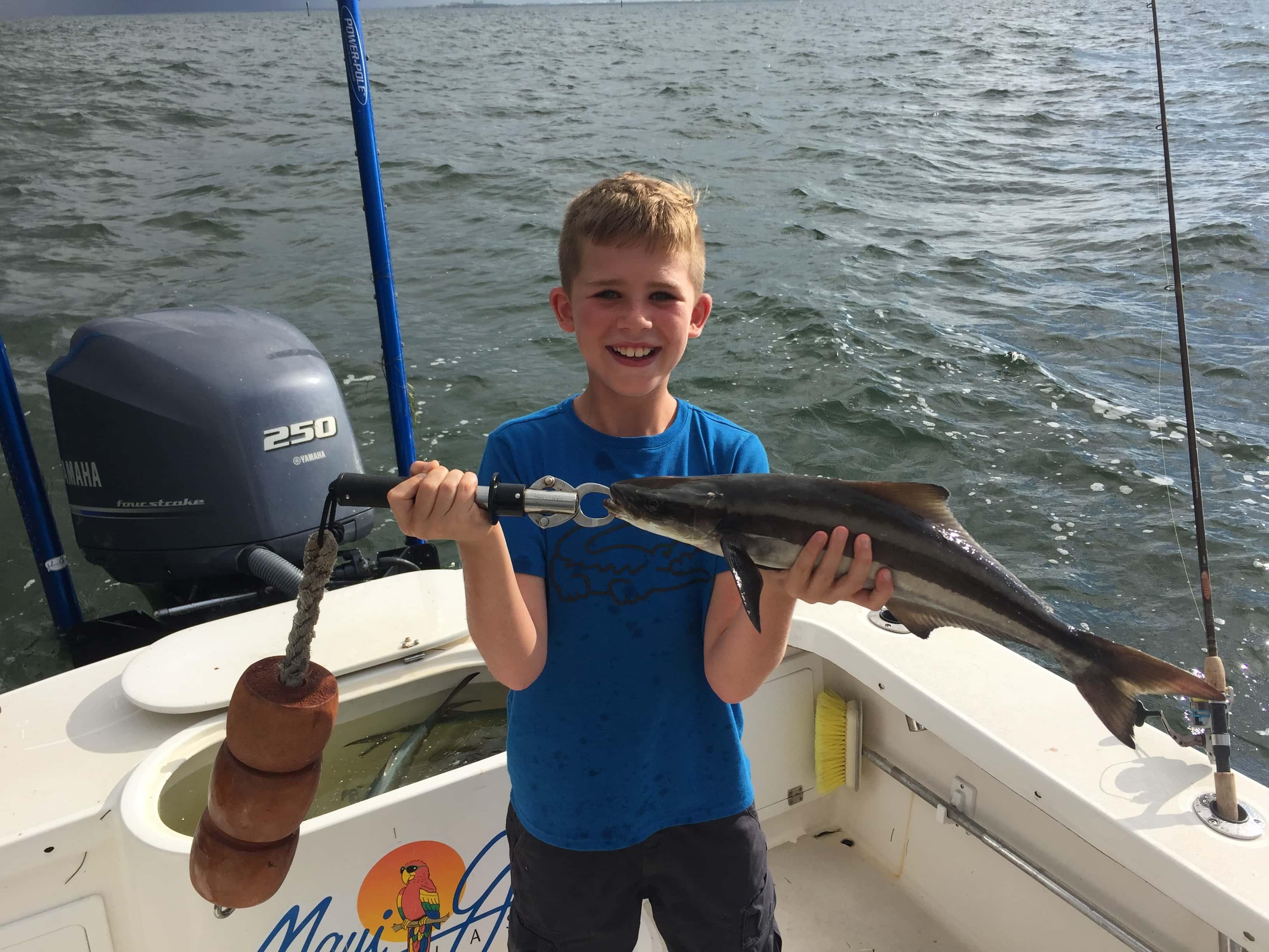 Cobia fishing tampa bay florida 813 758 3406 shallow for Tampa bay fish
