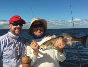 Redfish Tampa Bay Fishing the Flats 813-758-3406