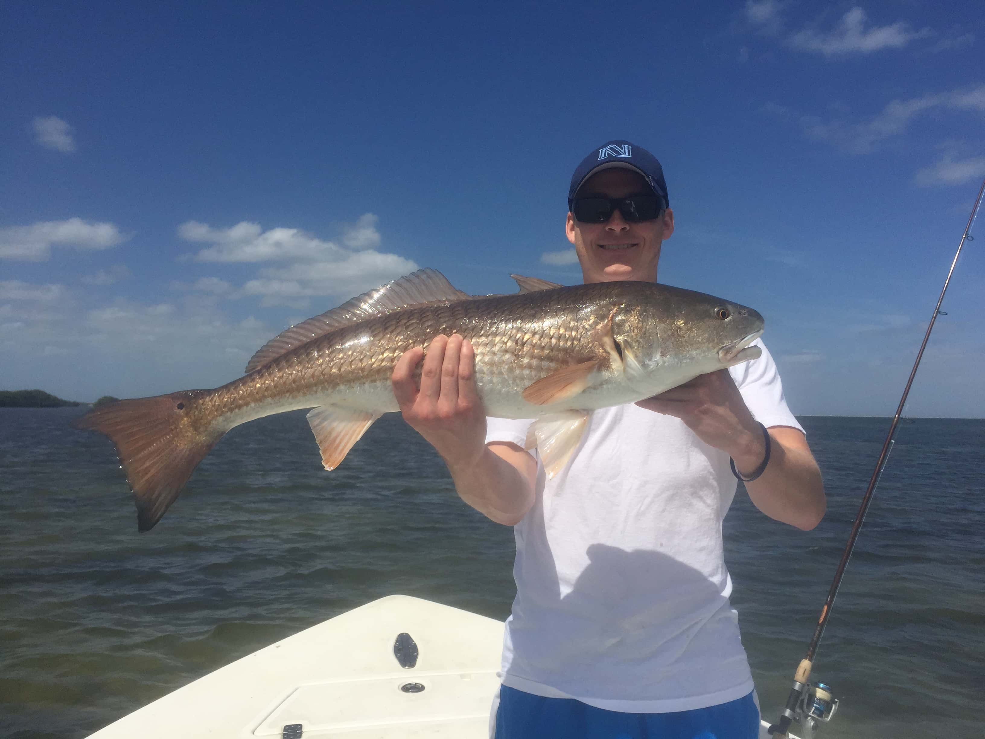 March and april tampa fishing charters and guide service for Tampa florida fishing charters