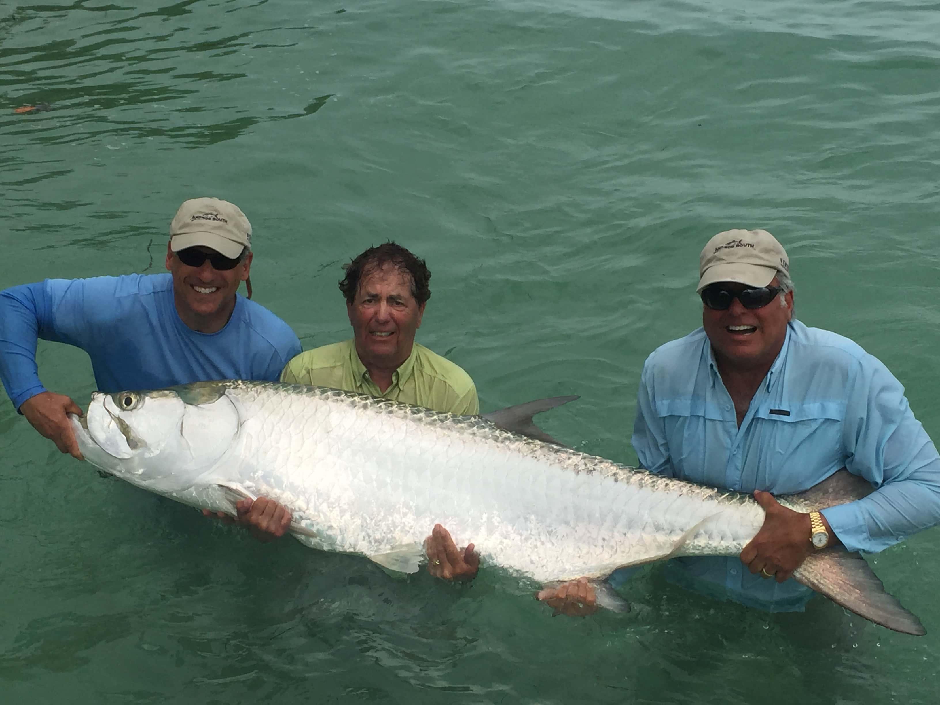Shark tarpon redfish in tampa florida fishing charters for Tarpon fishing tampa