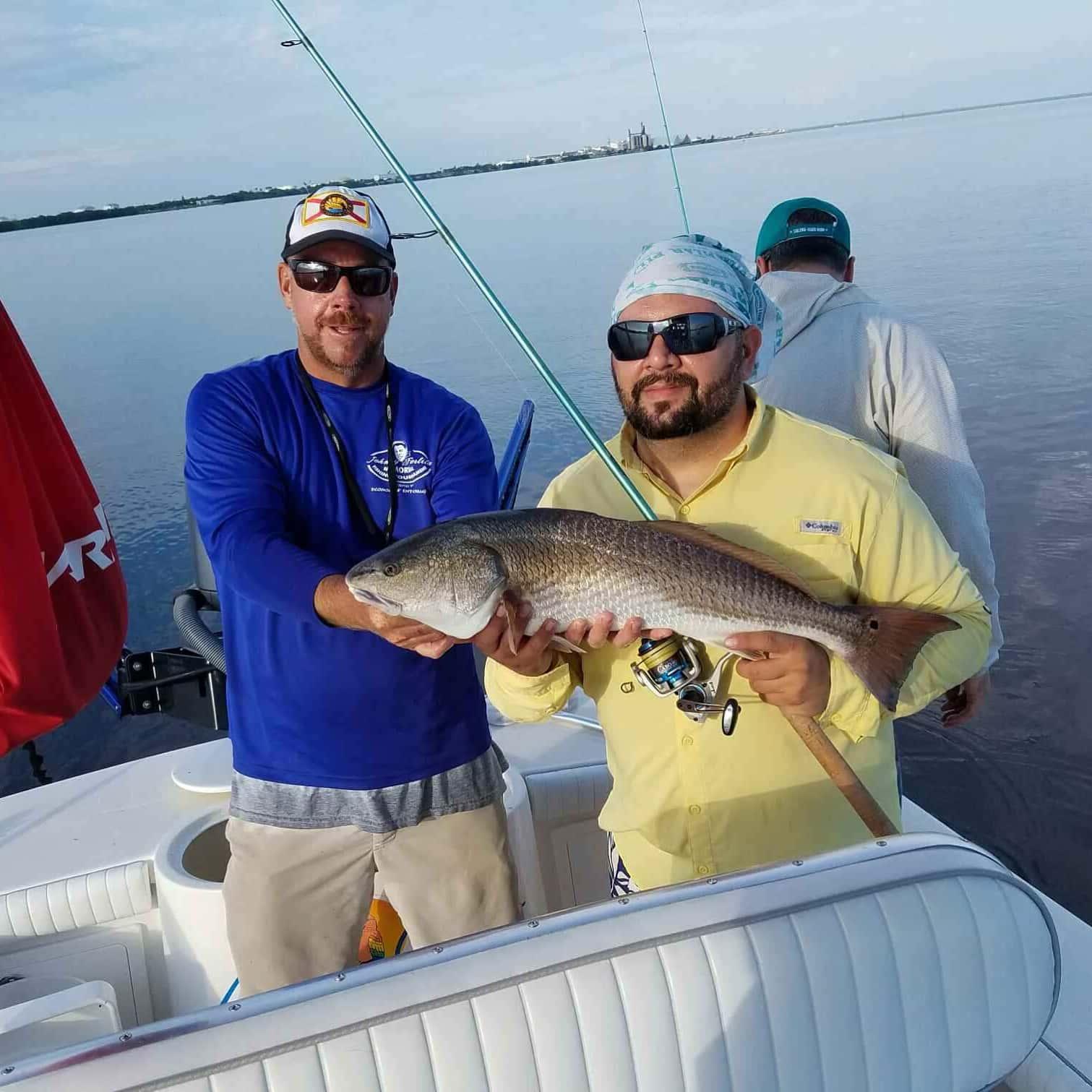 Shark tarpon redfish in tampa florida fishing charters for Florida shark fishing charters