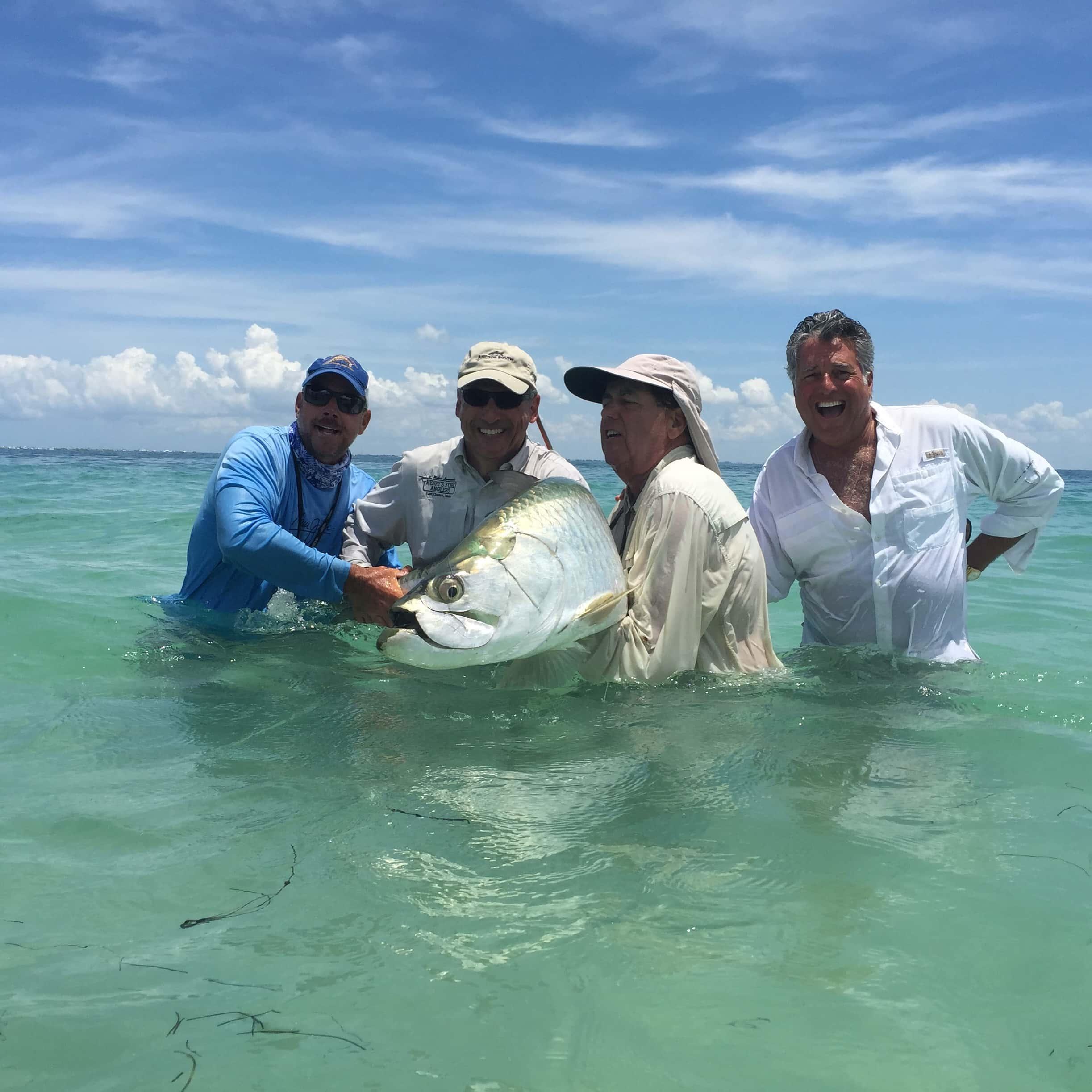 Shark tarpon redfish in tampa florida fishing charters for Florida fishing charters