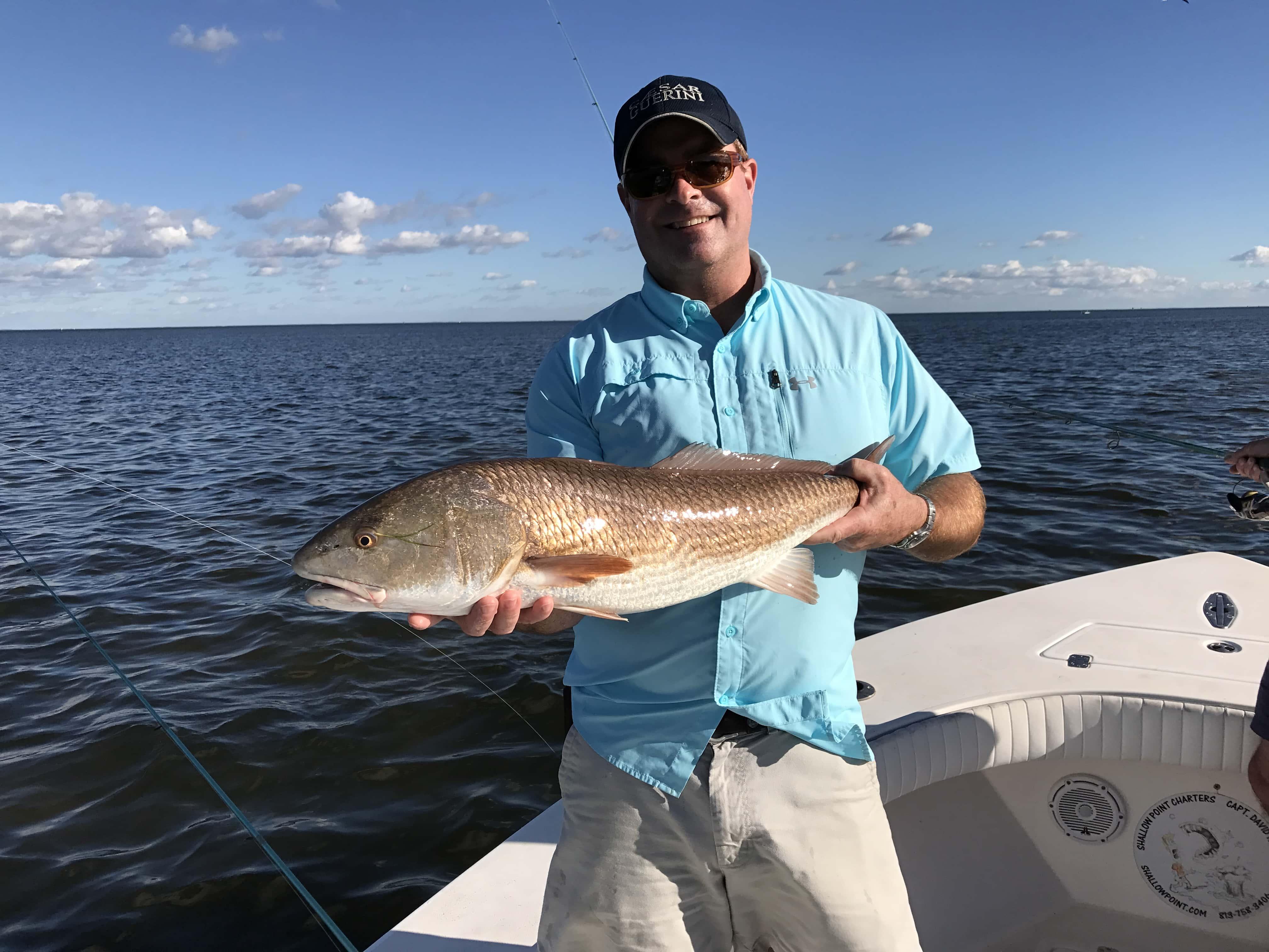 Fishing tampa bay florida flats bay and nearshore for Fishing tampa bay