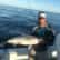 Beautiful Weather to Go Fishing and Catching in Tampa, St Petersburg and Clearwater Florida